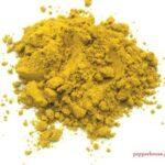 curry_jaipur